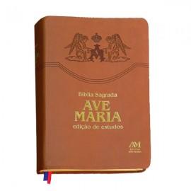 Bíblia Sagrada Edição de Estudos